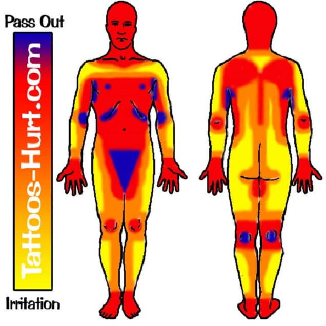 tattoo pain tolerance body chart